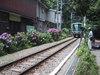Kamakura0623_021_1
